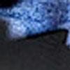 Paddington Havana Blue